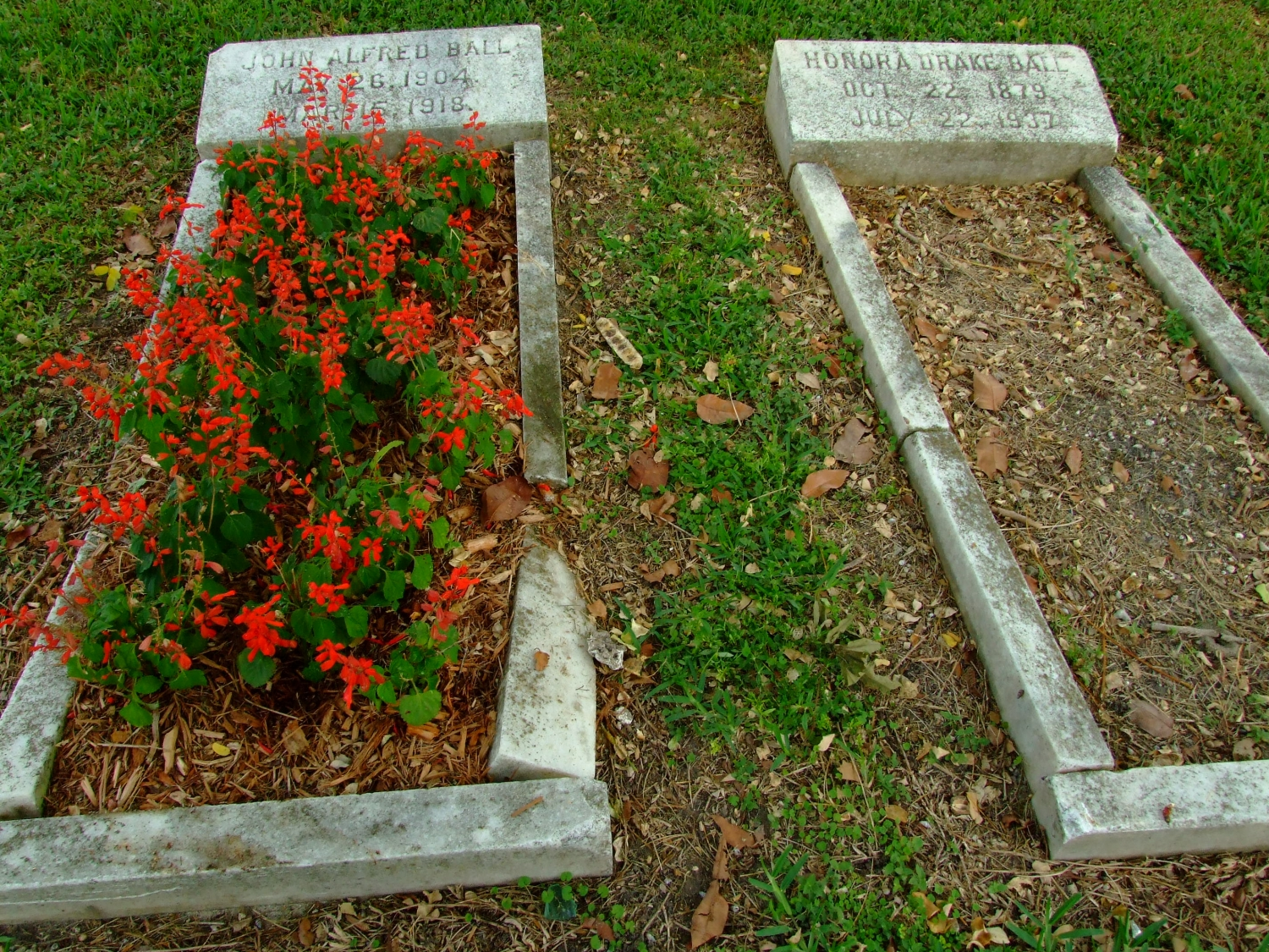 Celebrate Christina Pettersson's Birthday at the Miami City Cemetery